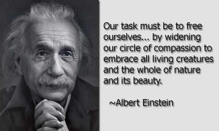 Text - Our task must be to free ourselves... by widening our circle of compassion to embrace all living creatures and the whole of nature and its beauty. NAlbert Einstein