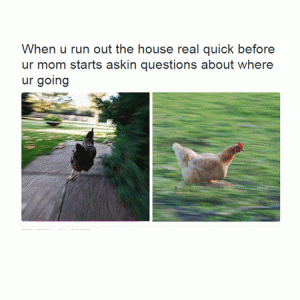 Chicken - When u run out the house real quick befa ur mom starts askin questions about whe ur going