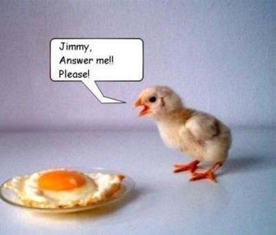 Chicken - Jimmy Answer mel! Please!