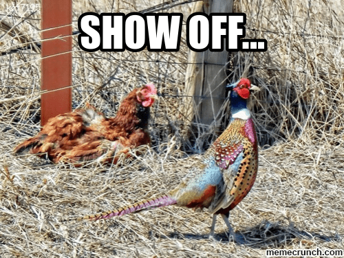 Bird - SHOW OFF memecrunch.com