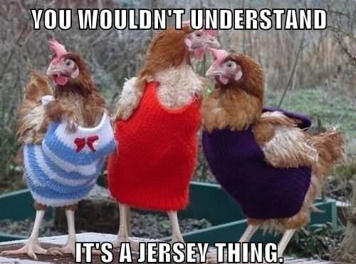Chicken - VOU WOULDN'T-UNDERSTAND IT'S AJERSEY THING