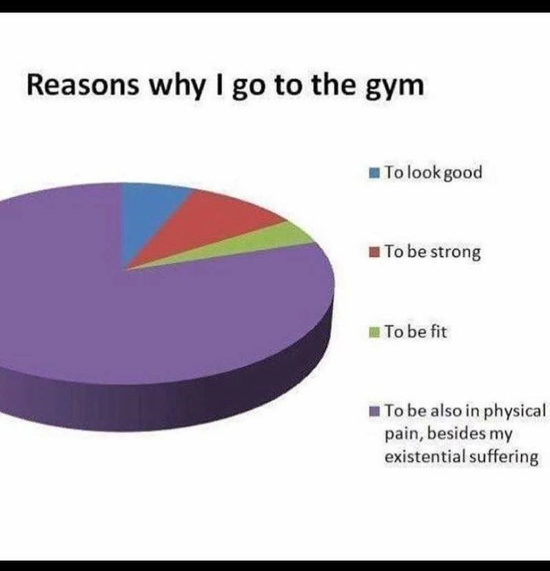 Text - Reasons why I go to the gym To look good To be strong To be fit To be also in physical pain, besides my existential suffering