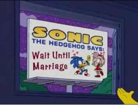Cartoon - SONIC THE HEDGEHOG SAYS Wait Until. Marriage