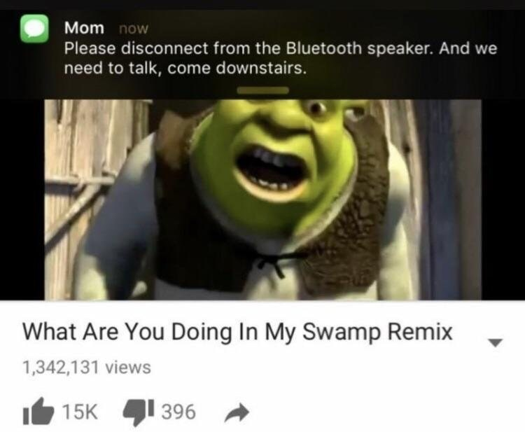 Funny meme about shrek and bluetooth speaker.