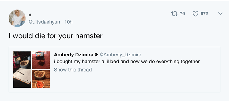 Text - 2I76 872 @ultsdaehyun 10h I would die for your hamster Amberly Dzimira @Amberly_Dzimira i bought my hamster a lil bed and now we do everything together Show this thread