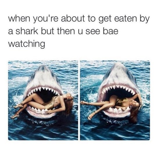 Funny friday animal meme of girl in a sharks mouth like Jaws, but is posing all sexy because BAE is watching