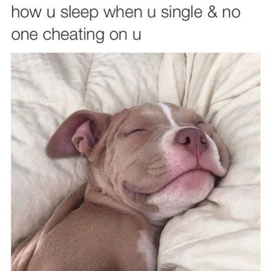 Funny friday animal meme about having no worries with pic of a dog sleeping soundly