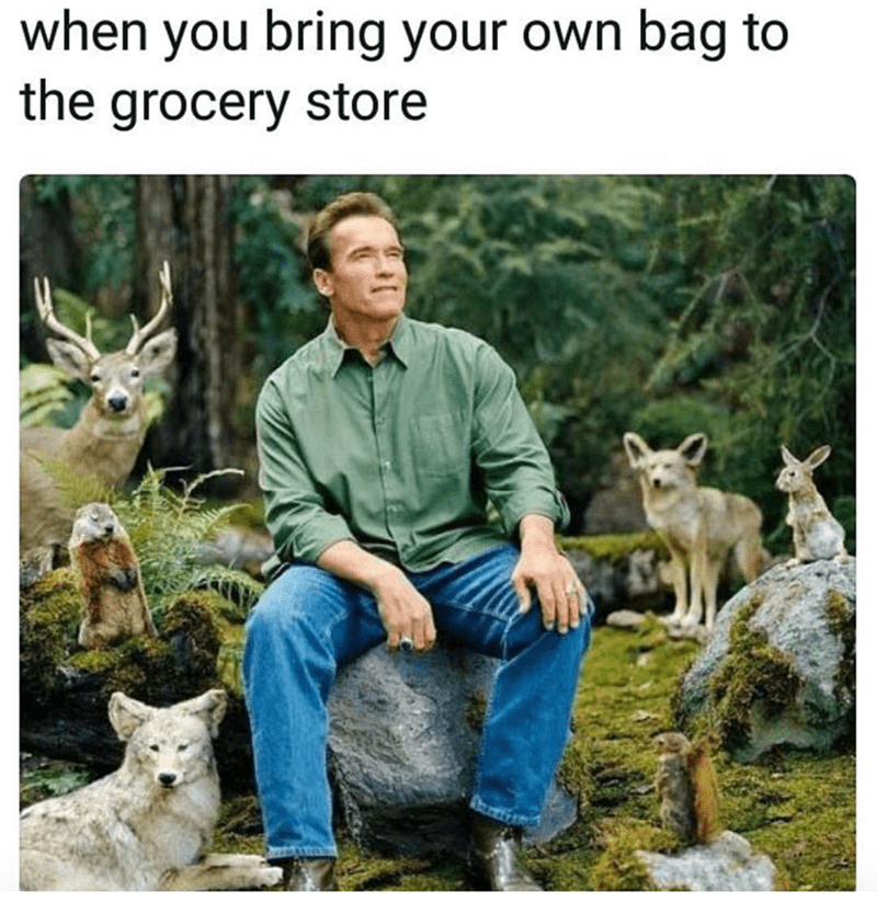 Wildlife - when you bring your own bag to the grocery store