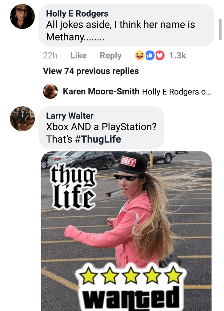 Text - Holly E Rodgers All jokes aside, I think her name is Methany. Like 1.3k 22h Reply View 74 previous replies Karen Moore-Smith Holly E Rodgers o... Larry Walter Xbox AND a PlayStation? That's #ThugLife OBEY thug life warted