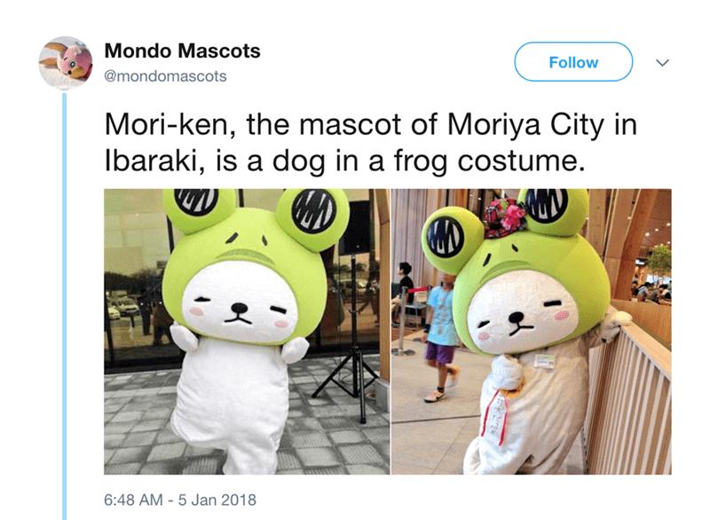japanese mascot - Cartoon - Mondo Mascots Follow @mondomascots Mori-ken, the mascot of Moriya City in Ibaraki, is a dog in a frog costume. 6:48 AM 5 Jan 2018