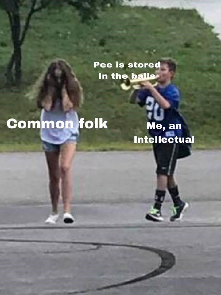 memes - Running - Pee is stored In the balls Common folk Me, an Intellectual