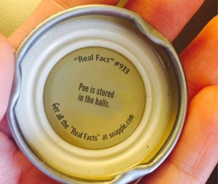 "memes - Yellow - ""Real Fact"" # 933 Pee is stored in the balls et all the ""Real Facts"" at snagple.com"