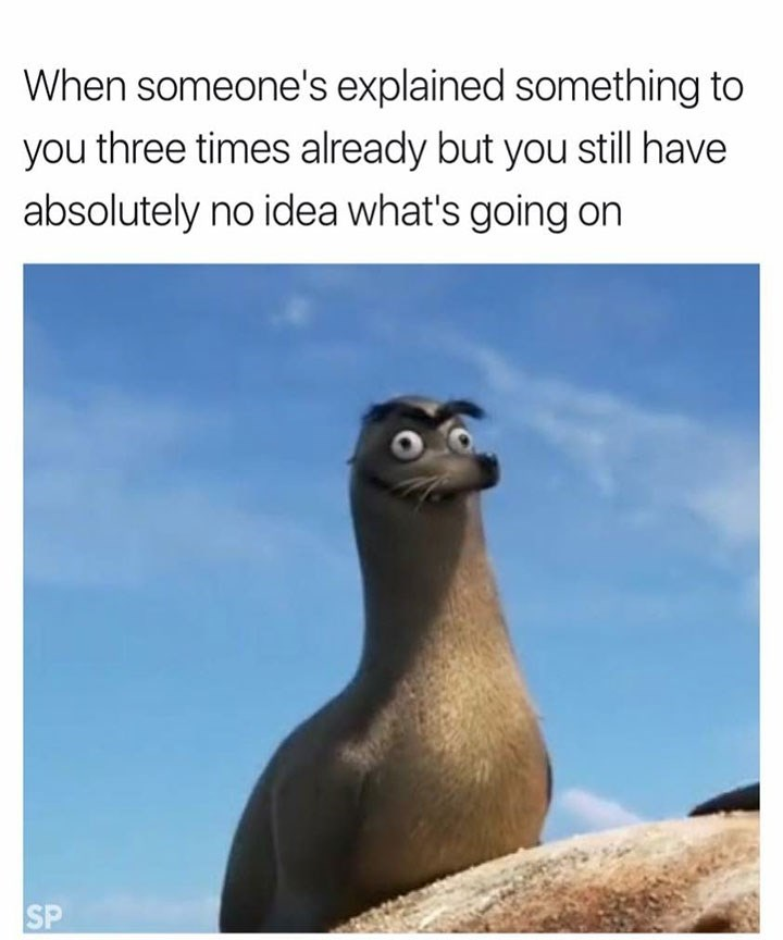 sunday meme of Gerald from Finding Dory sitting on a rock