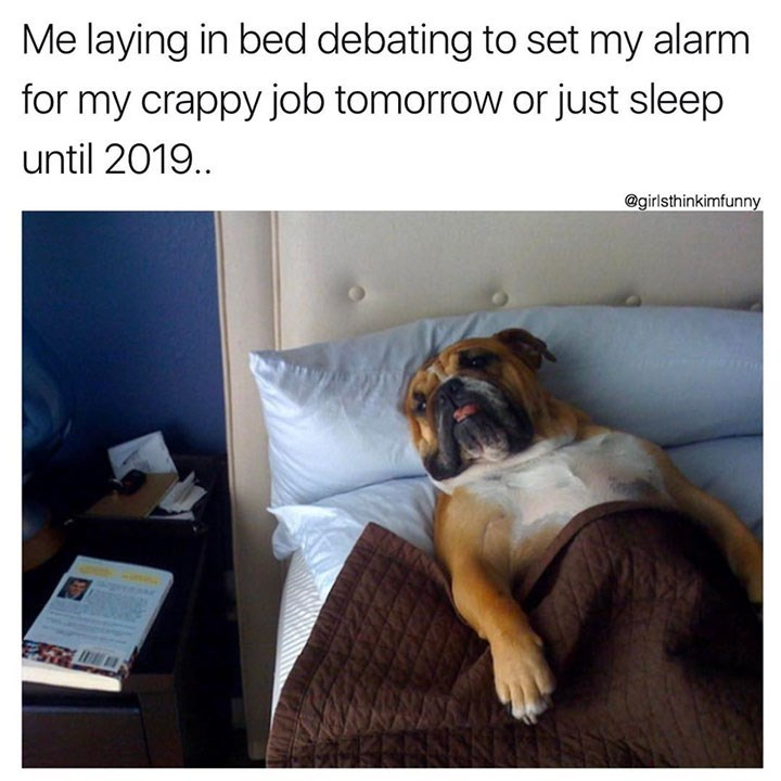 sunday meme of a dog sleeping in a bed