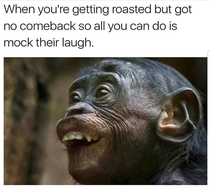 sunday meme of a monkey tucking its lower lip under