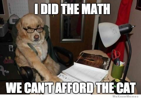 Internet meme - I DID THE MATH WE CANTAFFORD THE CAT WeKnowMemes
