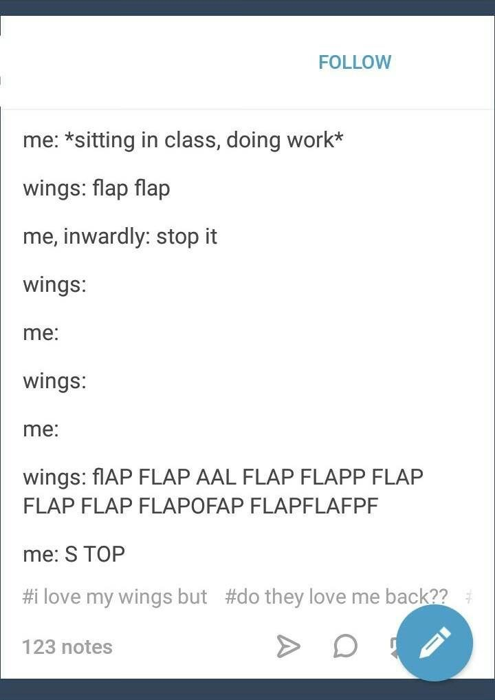 Text - FOLLOW me: *sitting in class, doing work* wings: flap flap me, inwardly: stop it wings: me: wings: me: wings: fIAP FLAP AAL FLAP FLAPP FLAP FLAP FLAP FLAPOFAP FLAPFLAFPF me: S TOP #i love my wings but #do they love me back?? 123 notes