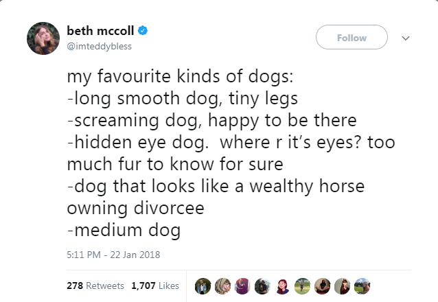 Text - beth mccoll Follow @imteddybless my favourite kinds of dogs: -long smooth dog, tiny legs -screaming dog, happy to be there -hidden eye dog. where r it's eyes? too much fur to know for sure -dog that looks like a wealthy horse owning divorcee medium dog 5:11 PM - 22 Jan 2018 278 Retweets 1,707 Likes