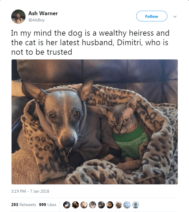 Canidae - Ash Warner Follow @AlsBoy In my mind the dog is a wealthy heiress and the cat is her latest husband, Dimitri, who is not to be trusted 3:19 PM -7 Jan 2018 293 Retweets 999 Likes