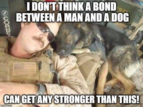 Canidae - I DON'T THINK A BOND BETWEEN A MAN AND A DOG CAN GET ANY STRONGER THAN THIS! gp com