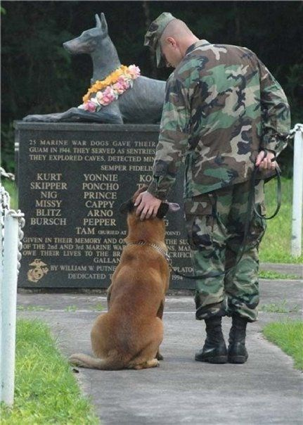 Dog - 25 MARINE WAR DOGS GAVE THEIR) GUAM IN 944 THEY SERVED AS SENTRIES THEY EXPLORED CAVES, DETECTED MIN SEMPER FIDELI YONNIE PONCHO PRINCE CAPPY ARNO PEPPER TAM acaED AT KURT SKIPPER KOS T NIG MISSY BLITZ BURSCH OINT GIVEN IN THEIR MEMORY AND O OF THE 2nd AND 3rd MARINE WAS OWE THEIR LIVES T0 THE BR GALLAN BY WILLIAM W PUTNE DEDICATED T THE SU NS, MAN CRIFIC PLATO 199