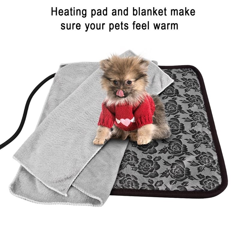 Dog - Heating pad and blanket make sure your pets feel warm