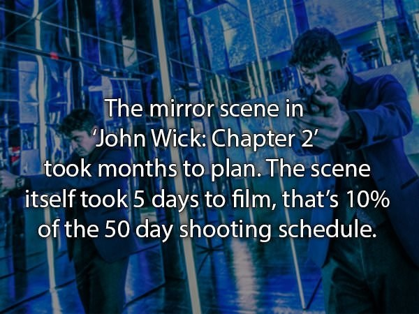 Text - The mirror scene in John Wick: Chapter 2 took months to plan. The sce itself took 5 days to film, that's 10% of the 50 day shooting schedule.