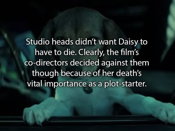 Text - Studio heads didn't want Daisy to have to die. Clearly, the film's co-directors decided against them though because of her death's vital importance as a plot-starter.