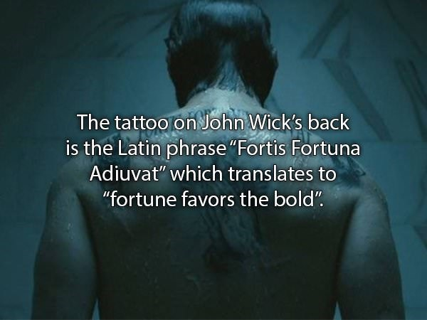 """Text - The tattoo on John Wick's back is the Latin phrase """"Fortis Fortuna Adiuvat"""" which translates to """"fortune favors the bold"""""""