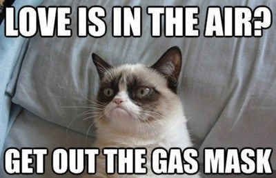 grumpy - Cat - LOVE IS IN THE AIR? GET OUT THE GAS MASK