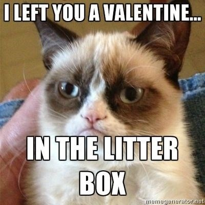 grumpy - Cat - I LEFT YOU A VALENTINE.. IN THE LITTER BOX memegenerator.net
