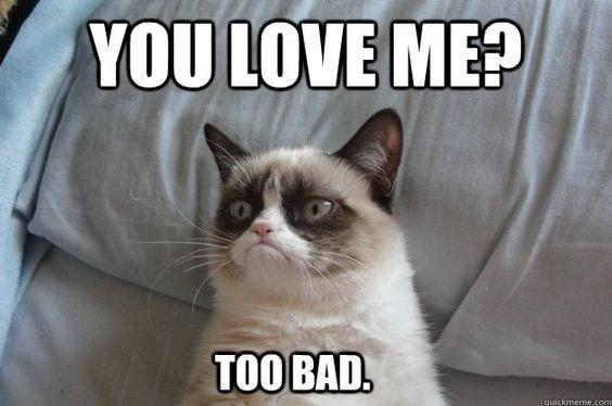 grumpy - Cat - YOU LOVE ME? TOO BAD. quickmeme.com