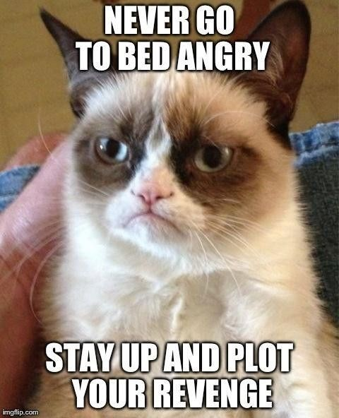 grumpy - Cat - NEVER GO TO BED ANGRY STAY UPAND PLOT YOUR REVENGE imgflip.com