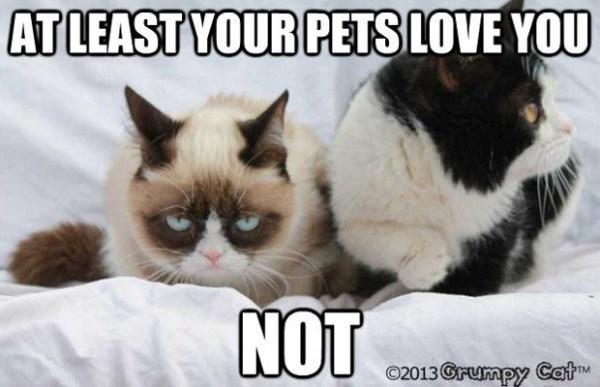 grumpy - Cat - ATLEAST YOUR PETSLOVE YOU NOT O2013Grumpy Cat