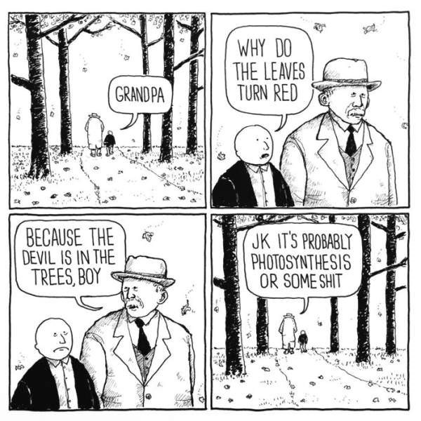 Cartoon - WHY DO THE LEAVES TURN RED GRAND PA p BECAUSE THE DEVIL IS IN THE TREES,BOY JK IT'S PROBABLY PHOTOSYNTHESIS OR SOME SHIT a