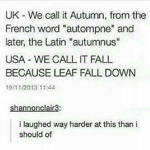 post about the differences between autumn and fall