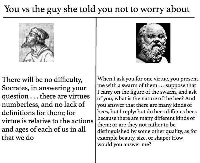 philosophy meme - Text - You vs the guy she told you not to worry about When I ask you for one virtue, you present me with a swarm of them... suppose that I carry on the figure of the swarm, and ask of you