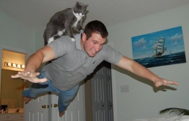 Cat riding a jumping person