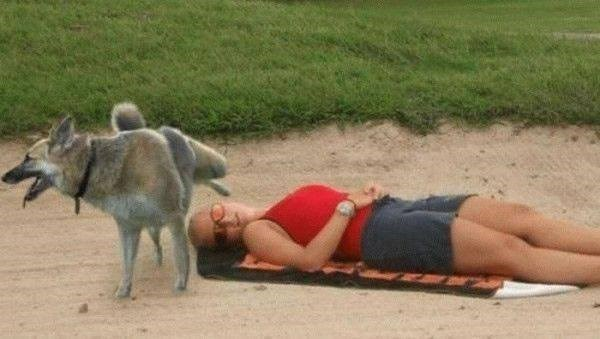 woman lying out in the sun and bird is about to poop on her face