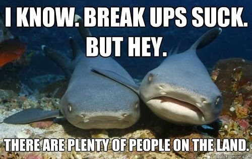 Fish - I KNOW: BREAK UPS SUCK. BUT HEY. THEREARE PLENTYOF PEOPLE ON THE LAND quickmeme com