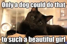 Cat - Onlyadog could do that to such a beautiful girl