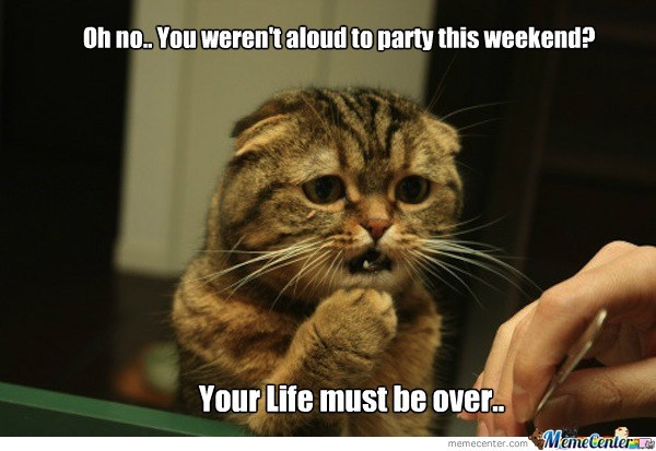 Cat - Oh no You werent aloud to party this weekend? Your Life must be over. MemeCenterae memecenter.com