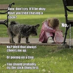 Dog - Aww, don't cry. ItlI be okay Have you tried chasinga stick? No. No? Well that always cheers me up Or peeing on a tree You should probably try the stick thing first FOUND AT VERYFUNNYPICS.EU