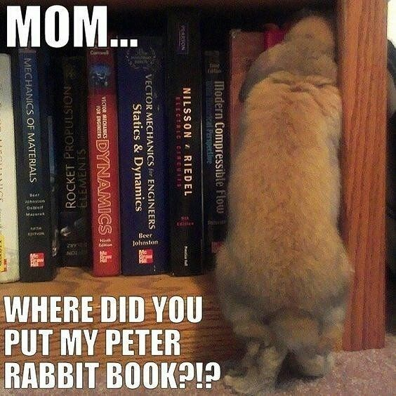 Book - MOM.. Cal Dewei Marsres Beer Hinits tdan Johnston WHERE DID YOU PUT MY PETER RABBIT BOOK Modern Compressible Flow l Perspecloe NILSSON RIEDEL ARSON ELECTRIC CIRCUSS VECTOR MECHANICS for ENGINEERS Statics & Dynamics VECTOR ECHANCS FOR ENGINEERS DYNAMICS l ELEMENTS ROCKET PROPULSION MECHANICS OF MATERIALS