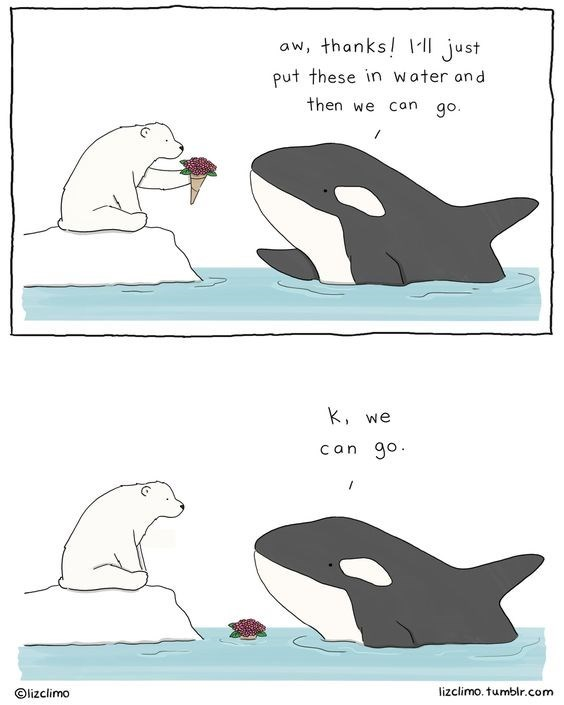 Cartoon - aw, thanks! just put these in water and then we Can go. k, we can go lizclimo. tumblr.com Olizclimo