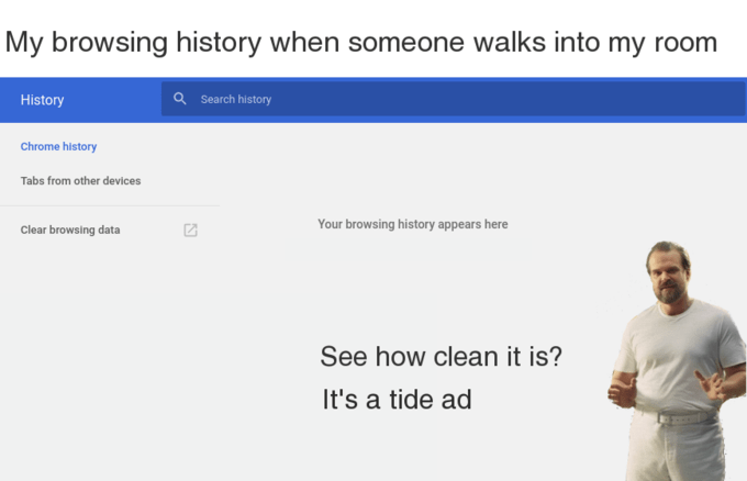 tide ad - Text - My browsing history when someone walks into my room aSearch history History Chrome history Tabs from other devices Your browsing history appears here Clear browsing data See how clean it is? It's a tide ad