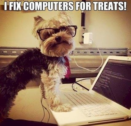 Dog - IFIX COMPUTERS FOR TREATS!
