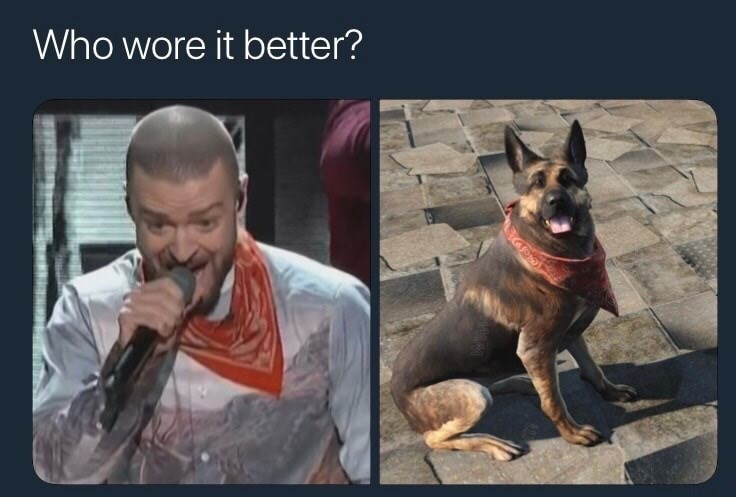 dog meme comparing Justin Timberlake and a dog wearing a bandanna and who wore it better