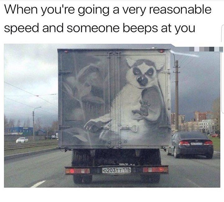 dog meme of a truck that has an animal painted on the back with its hand up