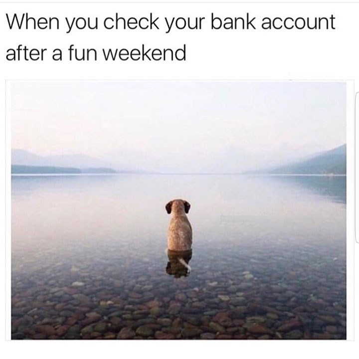 dog meme of a dog staring into nothing after a long weekend and checking your account after